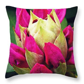 Rhododendron Velvet    Throw Pillow by Sarah Loft
