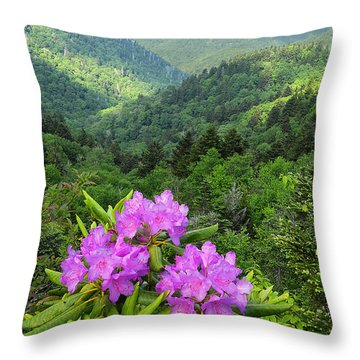 Rhododendron View Throw Pillow by Alan Lenk