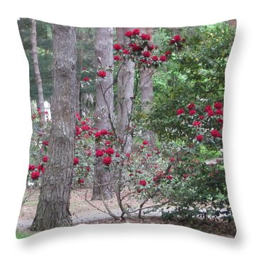 Rhododendrons In Lorain County Throw Pillow