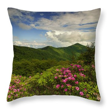 Rhododendrons On The Blue Ridge Parkway Throw Pillow