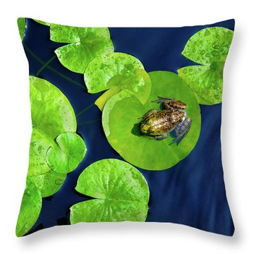 Ribbit Throw Pillow by Greg Fortier