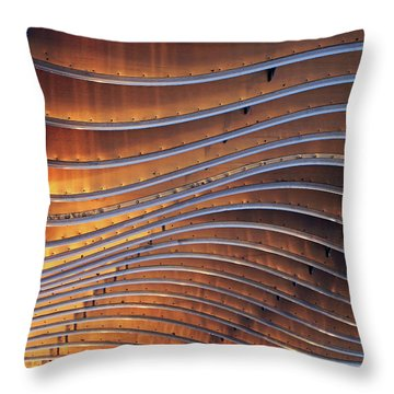 Ribbons Of Steel Throw Pillow