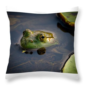 Ribit Ribit Throw Pillow by Allen Biedrzycki