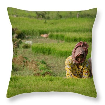Rice Field Worker Harvests Rice In Green Field In Southeast Asia Throw Pillow