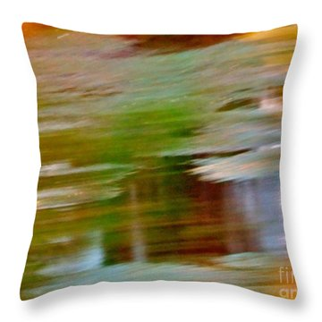 Rice Lake Throw Pillow