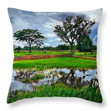 Rice Paddy View Throw Pillow