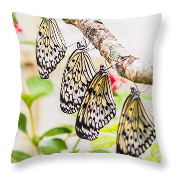 Rice Paper Butterflies Throw Pillow