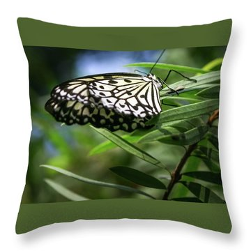 Rice Paper Butterfly - Throw Pillow