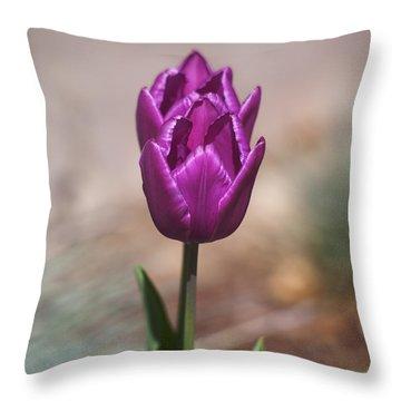 Rich Beauty Throw Pillow