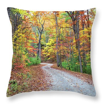Rich Mountain Road Throw Pillow