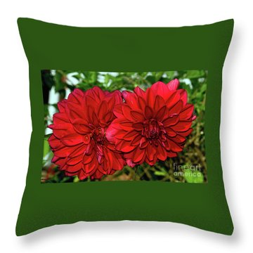 Throw Pillow featuring the photograph Rich Red Dahlias By Kaye Menner by Kaye Menner