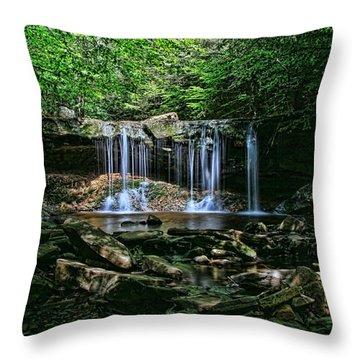 Ricketts Glen S P - Oneida Falls Throw Pillow