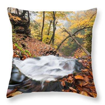 Ricketts Glen State Park Ganoga Falls Allegheny Mountains Pennsylvania Throw Pillow by Mark VanDyke