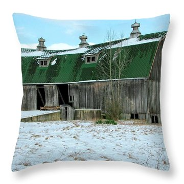 Rickety Old Barn Throw Pillow by Pat Cook