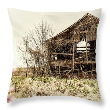 Rickety Shack Throw Pillow by Pamela Williams