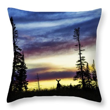 Ridge Sihouette Throw Pillow
