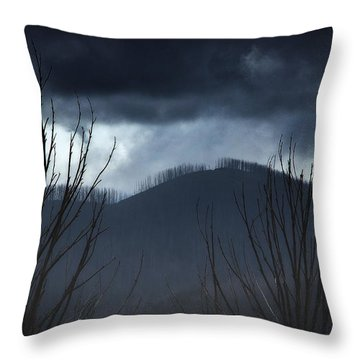 Ridgeline Throw Pillow