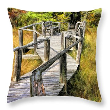 Ridges Sanctuary Crossing Throw Pillow by Christopher Arndt