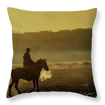 Throw Pillow featuring the photograph Riding His Horse by Pradeep Raja Prints