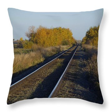 Riding The Rails Throw Pillow