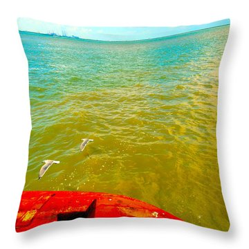 Riding The Wind - A Birds View Throw Pillow