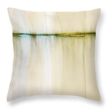 Fractal Landscape Throw Pillows
