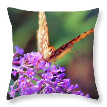Right At You Throw Pillow by Karol Livote