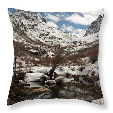 Right Fork Canyon Throw Pillow