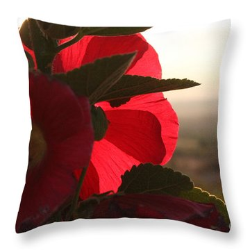 Right Turn On Red Throw Pillow
