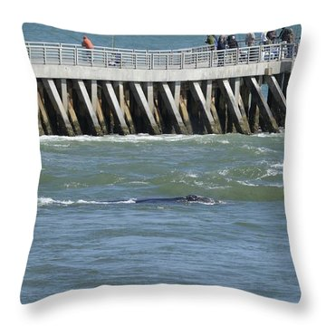 Right Whale At Sebastian Inlet Throw Pillow