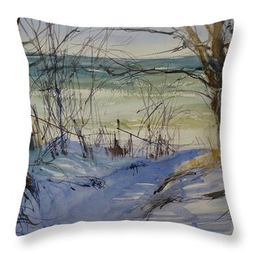 Riley Beach December Throw Pillow