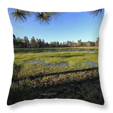 Rim Glade Throw Pillow by Gary Kaylor