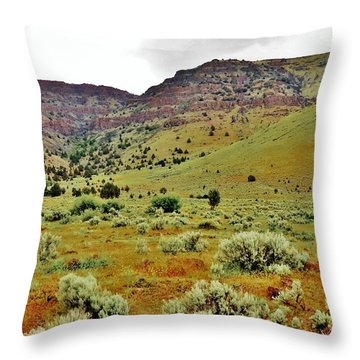 Rim Rock And Sage Brush Throw Pillow by Michele Penner