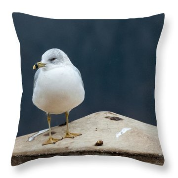 Ring Bill Throw Pillow