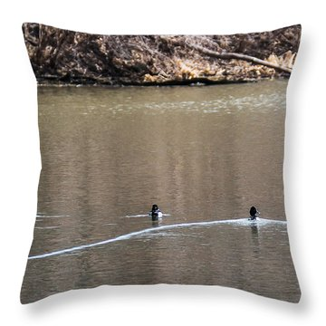 Ring-necked Duck Formation Throw Pillow by Edward Peterson