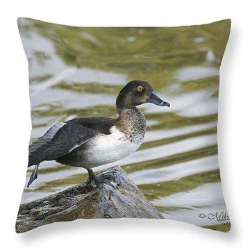 Ring-necked Throw Pillow