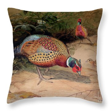 Ring Necked Pheasant Throw Pillow by Joseph Wolf