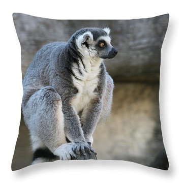 Ring-tailed Lemur #7 Throw Pillow