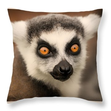 Ring Tailed Lemur Portrait Throw Pillow