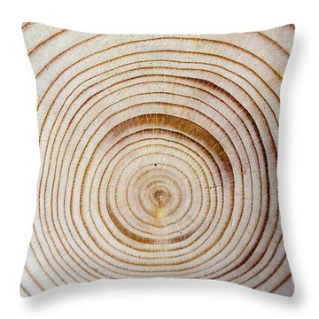 Rings Of A Tree Throw Pillow