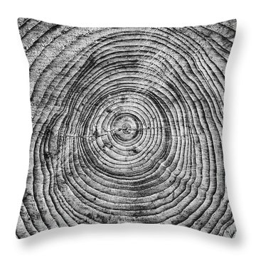 Passage Of Time Throw Pillows