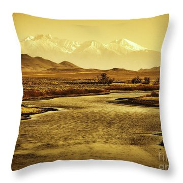 Rio Grande Colorado Throw Pillow