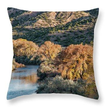 Rio Grande Embudo Vista Throw Pillow