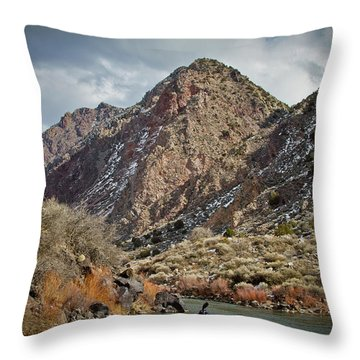 Throw Pillow featuring the photograph Rio Grande Racecourse In Winter by Atom Crawford