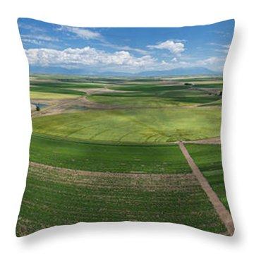 Rio Grande Valley Farms Throw Pillow