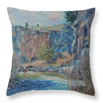 Rio Hondo Throw Pillow