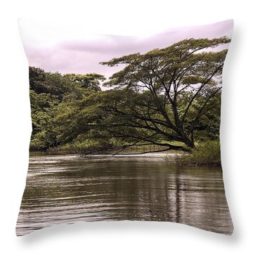 Riparian Rainforest Canopy Throw Pillow