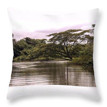 Riparian Rainforest Canopy Throw Pillow