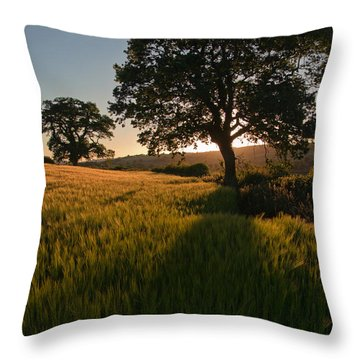 Ripe Harvest At The End Of The Day Throw Pillow