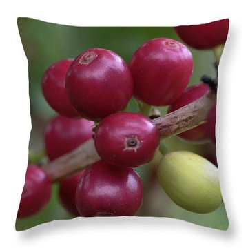 Ripe Kona Coffee Cherries Throw Pillow